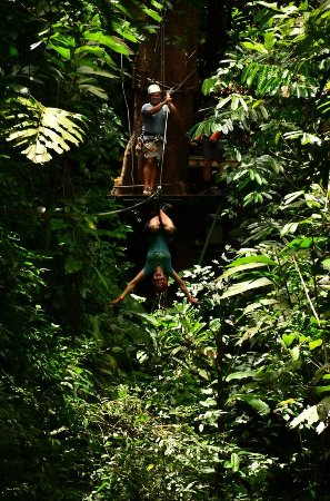 Quepos, Costa Rica: CAN_9970_large.jpg