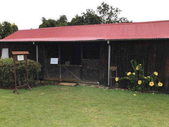 Captain Cook, Hawái: Uchida Farm