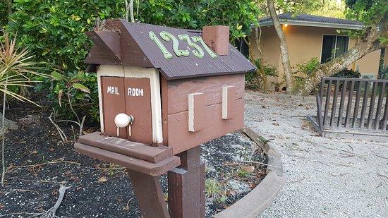 Parrot Nest Φωτογραφία