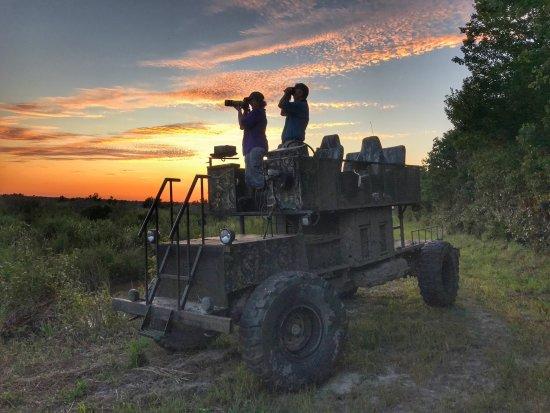 Plymouth, Karolina Północna: Swamp Buggy at sunset