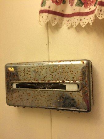 Palmyra, Pensilvanya: rusted kleenx box holder