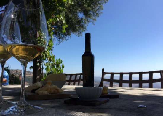 Waken Wine Tours