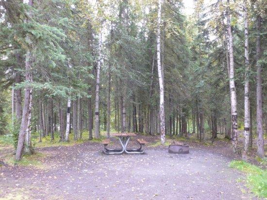 Eagle River, AK: Campsite number 25