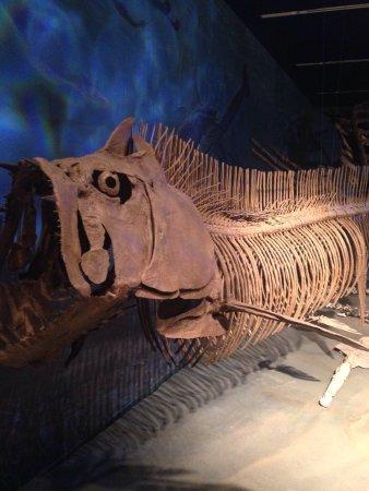 North Dakota Heritage Center & State Museum : photo0.jpg