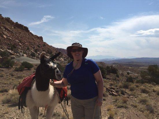 Capitol Reef Resort: Llama hike