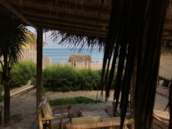Marcilia Beach Bungalows: View from bungalow