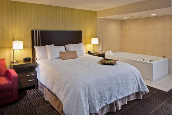 Hampton Inn & Suites Saginaw: King Whirlpool Room