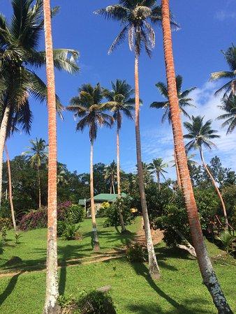 Maravu Taveuni Lodge : photo2.jpg