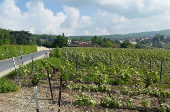 Small-Group Day Tour of Epernay...