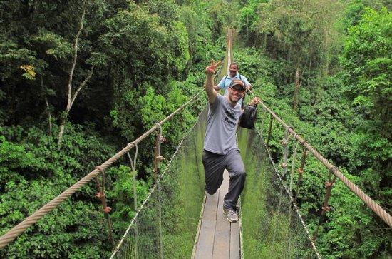 Puentes Colgantes del Arenal - Eco...