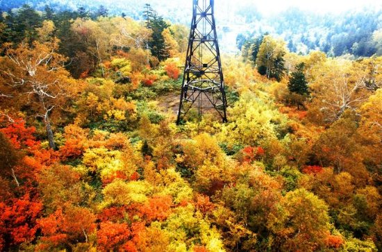 Otoño Hokkaido! Kurodake Ropeway y...