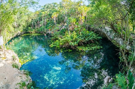 Private Snorkeling Tour in 2 Cenotes...