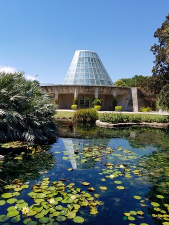 San Antonio Botanical Garden: Conservatory