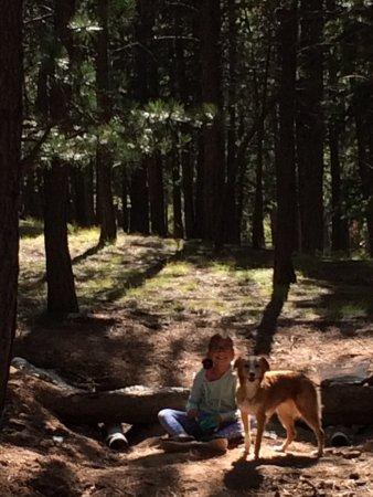 Woodland Park, Κολοράντο: photo0.jpg