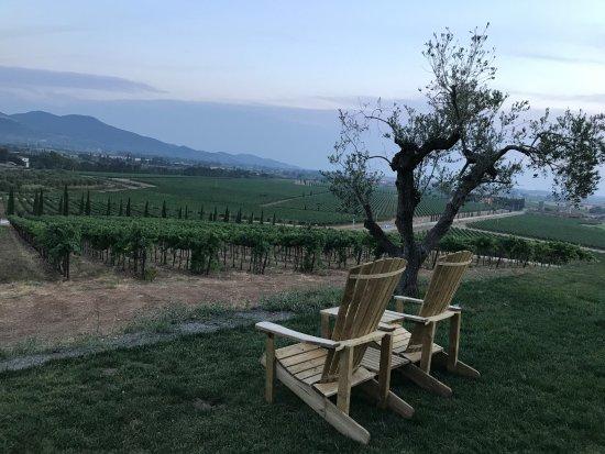 Gavorrano, Italia: La vista dal giardino
