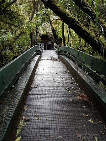 Opononi, Nueva Zelanda: paths