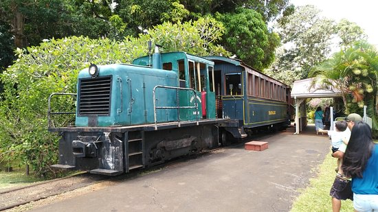 Both closed and open rail cars  - Picture of Kauai Plantation