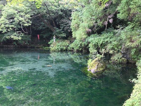 Sano, ญี่ปุ่น: photo2.jpg