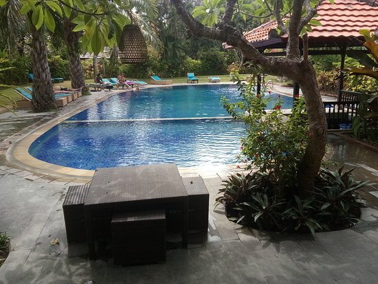 Three Brothers Bungalows: The pool
