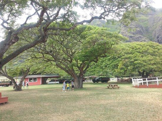 Kaaawa, Hawái: Picnic Grounds
