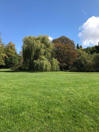 Hampstead Heath: photo5.jpg