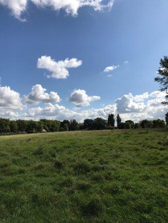 Hampstead Heath: photo6.jpg