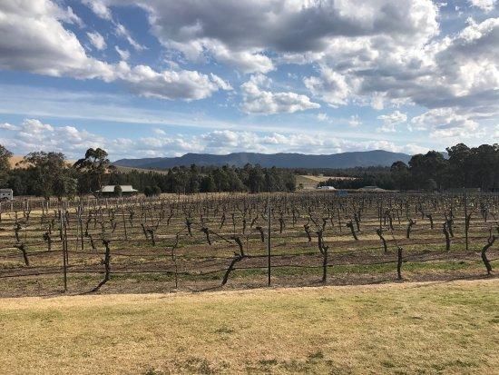 Mount View, Austrália: photo0.jpg
