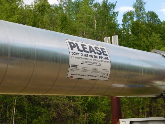 Alyeska Pipeline Visitor Center: Trans Alaska pipeline section.
