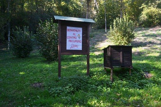 Tigliole, Ιταλία: Entrata