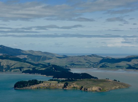 Christchurch Gondola : Quail Island