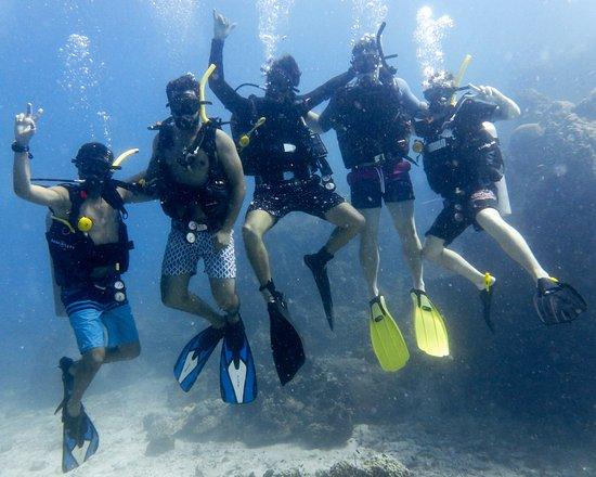 Roctopus Dive: Open water dive.
