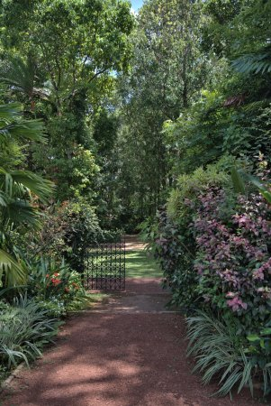The Wallawwa: garden and vegetable garden