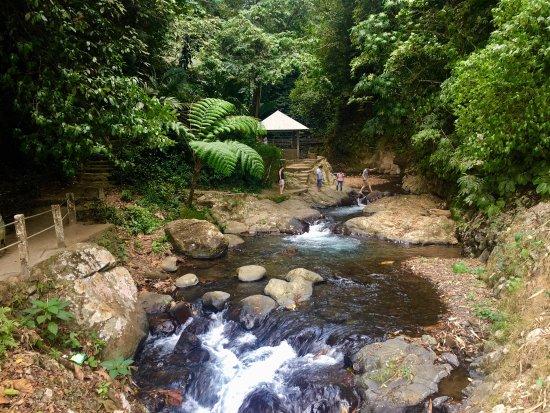 Gitgit Waterfall : photo2.jpg