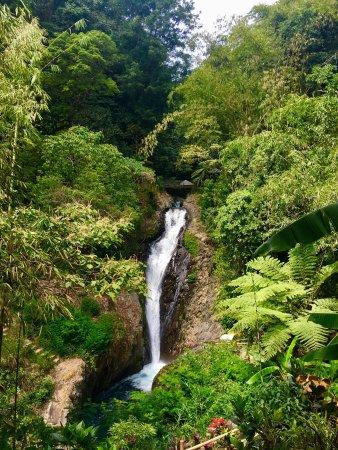 Gitgit Waterfall : photo3.jpg