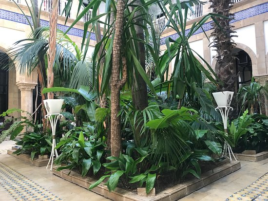 L'Heure Bleue Palais : patio garden