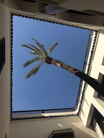 Zamzam Riad Photo