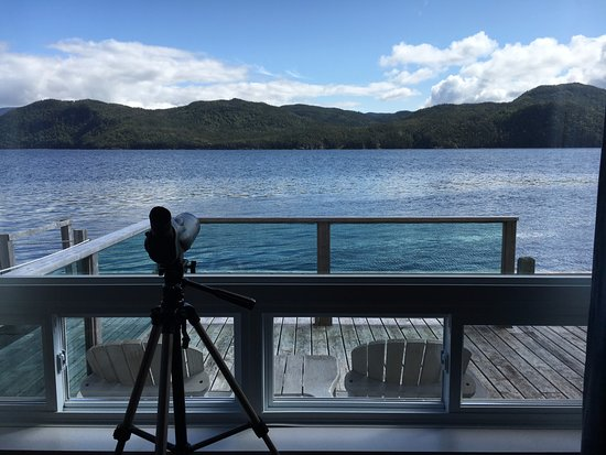 Woody Point, Canada: View from our suite of the bay with telescope