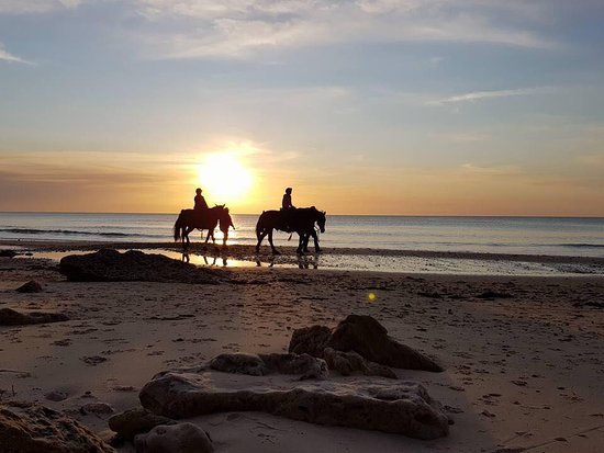 Port Willunga, Australia: Stunning night for a beach ride
