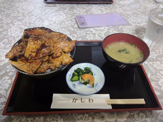 Sarabetsu-mura, Japón: かしわの豚丼