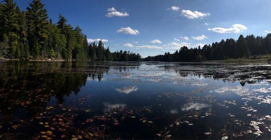 Algonquin Provincial Park, Canada: photo4.jpg