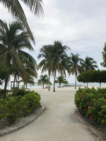 St. George's Caye Resort: pathway to the lounge and island dock.