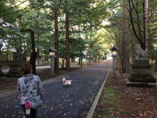 Otofuke-cho, Ιαπωνία: 音更神社