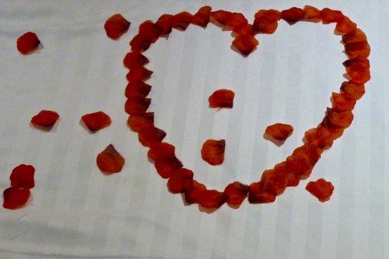 Honiton, UK: Rose petals on bed