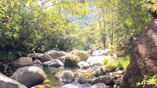 Daintree Region, Australia: River in Mossman gorge
