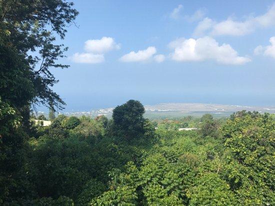 Holualoa, Hawái: photo3.jpg