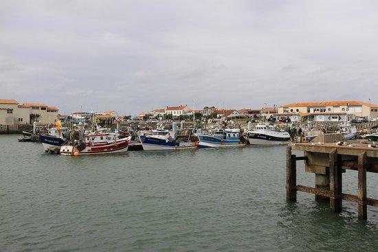 Le Port de la Cotinière : le port