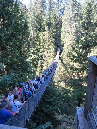 North Vancouver, Canadá: The suspension bridge, you walk over it to get into the park, then have to walk back to get to t