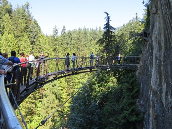 North Vancouver, Canadá: The cliff walk, very safe, as the bridge is anchored to the rock face, it doesn't sway.