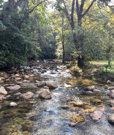 Nyanga, Zimbabwe: Stream by the golf course