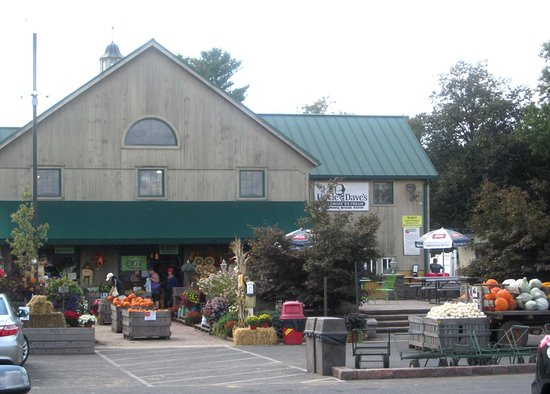 Yardley, PA: Shady Brook Farm - patio on right